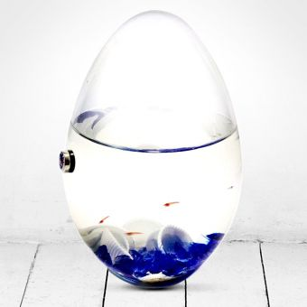 Beachworld Red Shrimp Glass Egg Ecosystem