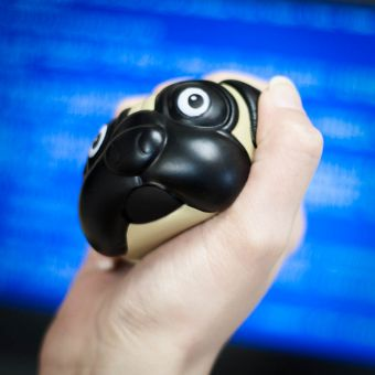 53816 Pug Stress Ball Lifestyle