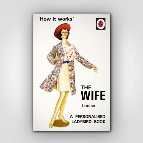 Personalised Ladybird The Wife Book