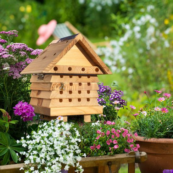 Solitary Bee Hive - Lifestyle
