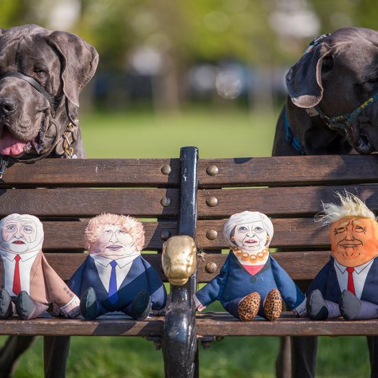 Pet Hates Politician Chew Toys - Lifestyle