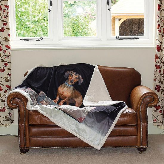 Dachshund Throw - grey background