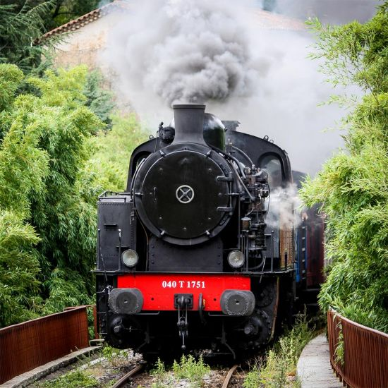 Steam Train and Afternoon Tea for Two