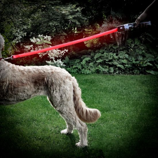 Star Wars Lightsaber Pet Lead – Darth Vader attached to a dog