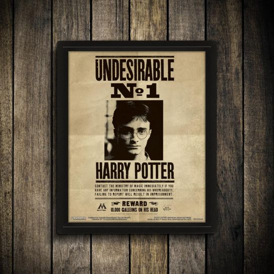 Harry Potter And Sirius Black 3D Art Wanted Poster