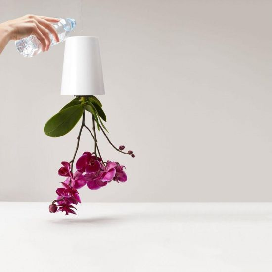 Sky Planter (Medium) - Lifestyle