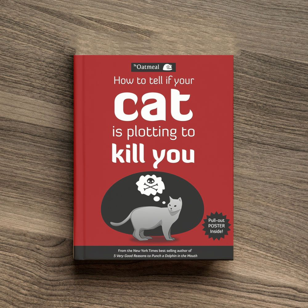how to tell if your cat is unwell