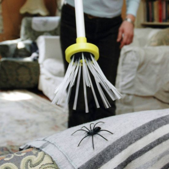 Spider Catcher Original