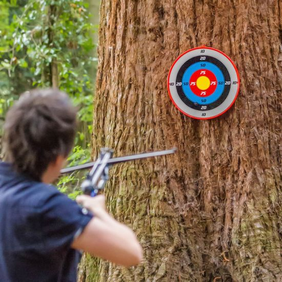 Crossbow target