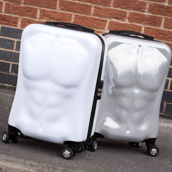 Ripped Luggage 1