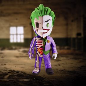 Joker Anatomy Figure