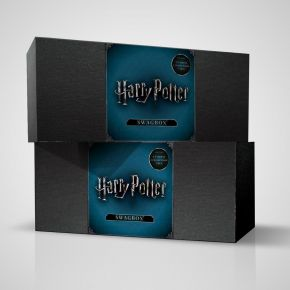Harry Potter Swag Box