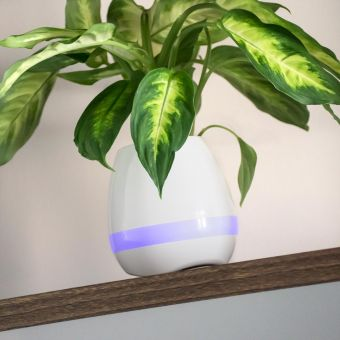 Piano Playing Plant Pot Speaker