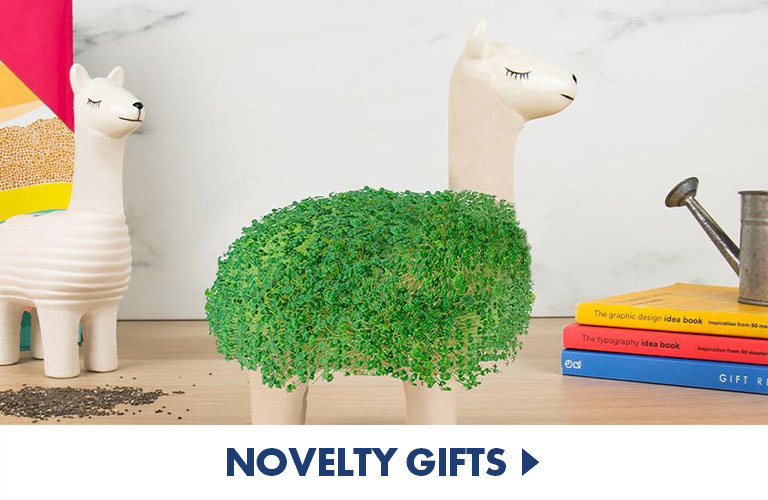 Novelty gifts that are fun and quirky. Great as gag gifts and won't break the bank.